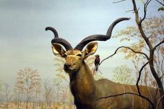 mammalogy-006